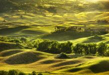 toskania – zielone wzgórza we włoszech