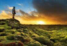 człowiek patrzący na zachód słońca