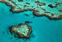 atole rafy koralowej widziane z samolotu