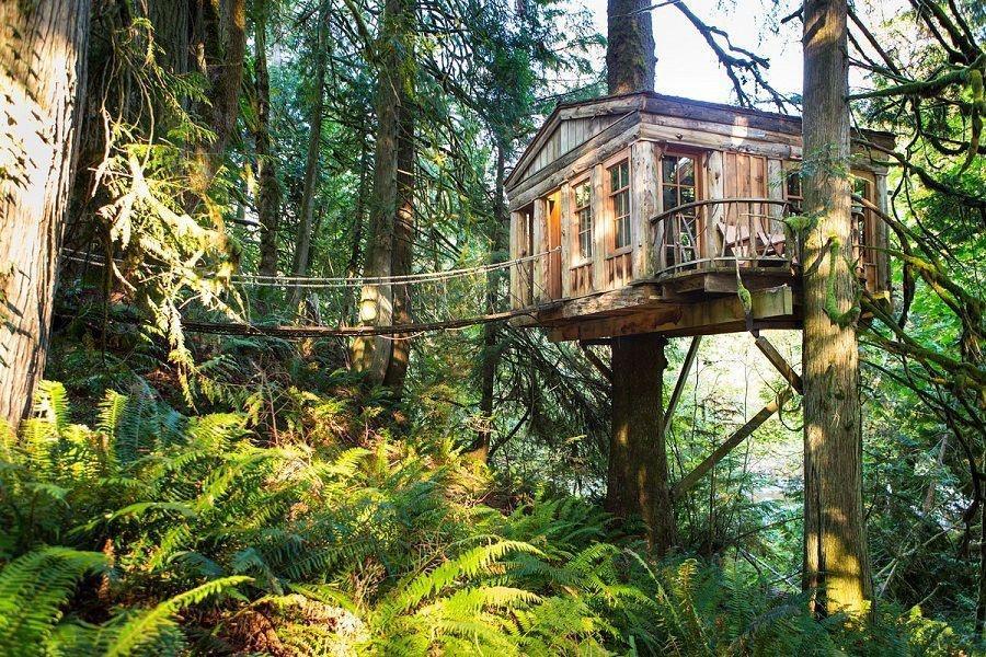 10 noclegów nie z tej ziemi, czyli najlepsze hotele na drzewach