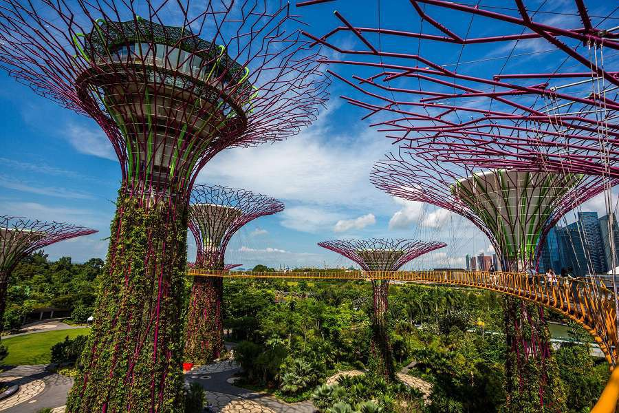 Garden-By-the-Bay-Supertree-grove-Singapore-shutterstock_202957180-1