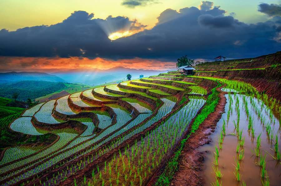 Tajlandia-Terraced-Paddy-Field-in-Mae-Jam-Village--Chaingmai-Province--Thailand-shutterstock_279311915-1