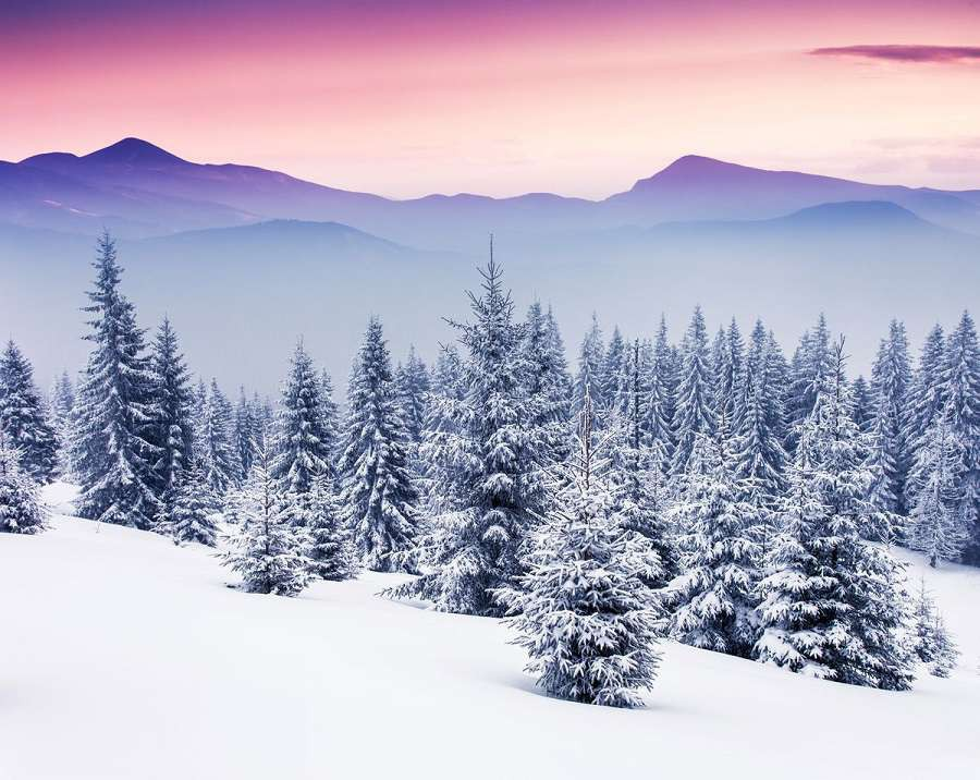 zima-choinki-bigstock-Fantastic-evening-winter-lands-1200