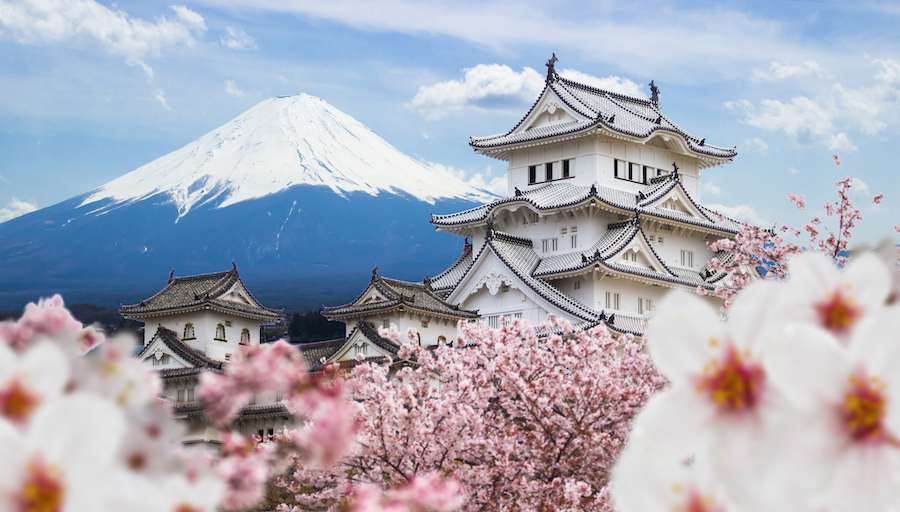 Himeji-Castle-and-full-cherry-blossom-with-Fuji-mountain-background-Japan-shutterstock_601341215