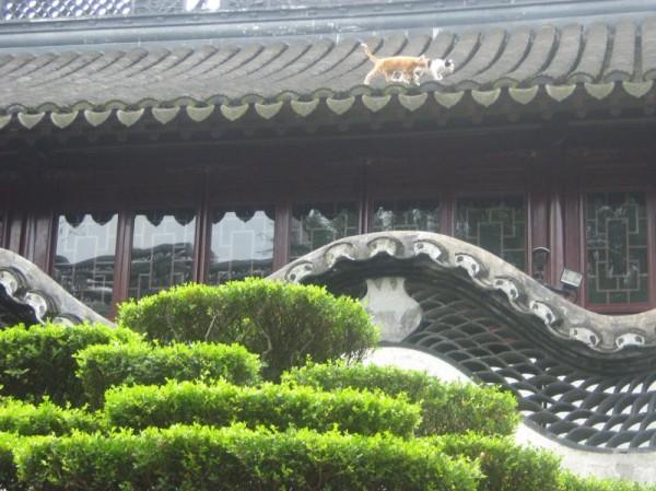ogrody yuyuan