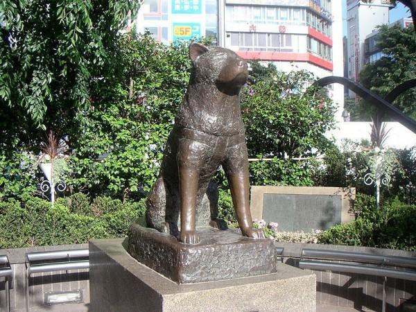 Pomnik Hachiko