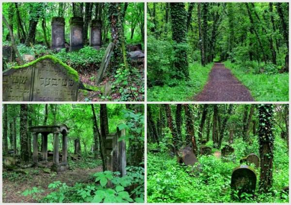 Cmentarz żydowski Częstochowa